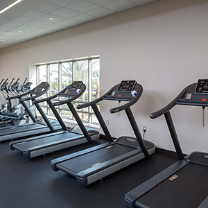 Fitness Center Treadmills & Ellipticals